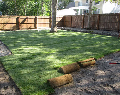 Exceptional Lawn Care in Egg Harbor Township, NJ